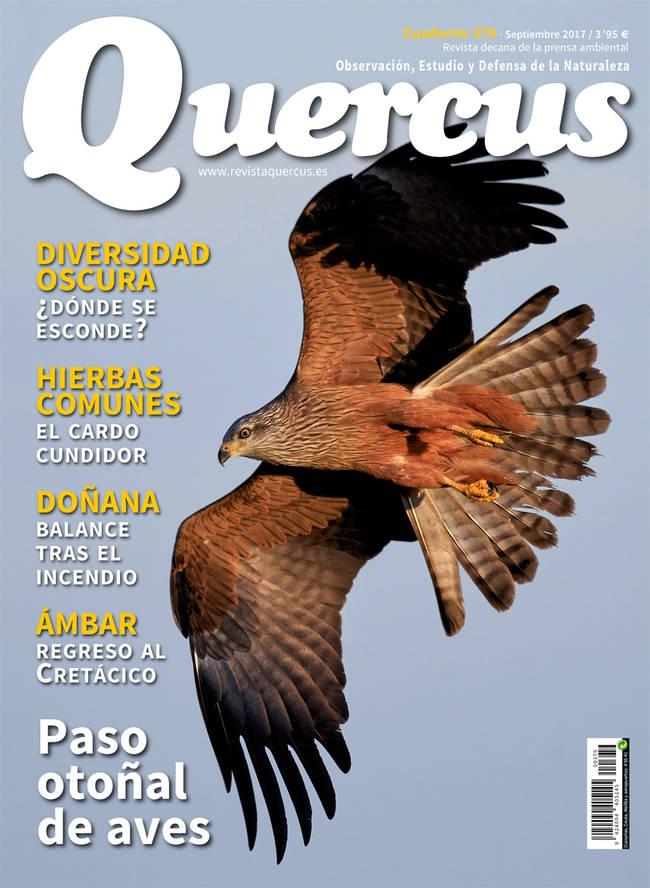 Portada Quercus nº 379/Septiembre 2017