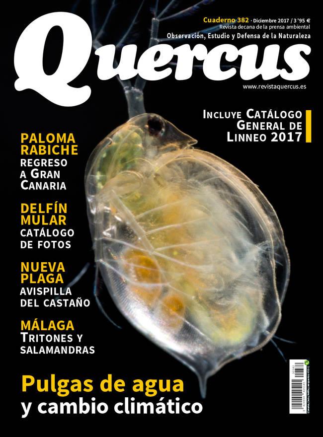 Portada Quercus nº 382/Diciembre 2017
