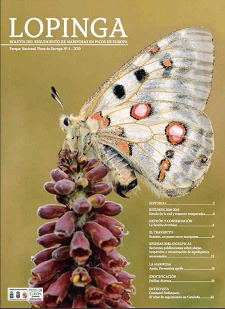 Nuevo número de la revista de las mariposas de Picos