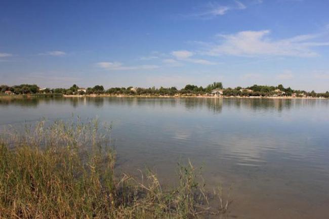 Laguna Grande de Villafranca de los Caballeros (Toledo). Imagen de Fundación Global Nature, entidad seleccionada en la I Convocatoria de Medioambiente Desarrollo Sostenible por su proyecto 'Flora del agrosistema manchego'.